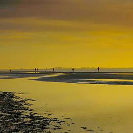 Steven Ainsworth - Sanibel Sunrise XXII