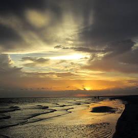 Rosie Brown - Sanibel Sunset