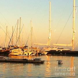 Juan Jiang - Santa Barbara harbour