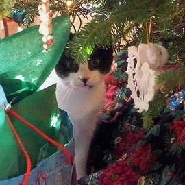 Chuck  Hicks - Santa Bring Tuna