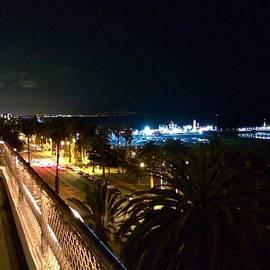 Robert Stewart - Santa Monica Pier #santamonica #night