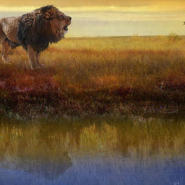 R christopher Vest - Savanna Reflection African Lion