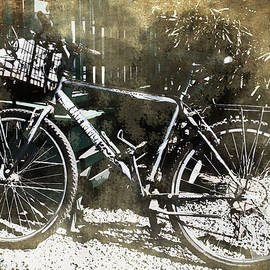 Paulette B Wright - Save Honolua - Lahaina Bicycle