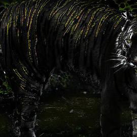 Miroslava Jurcik - Save The Tigers