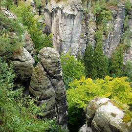 Iryna Soltyska - Saxon Switzerland nature.