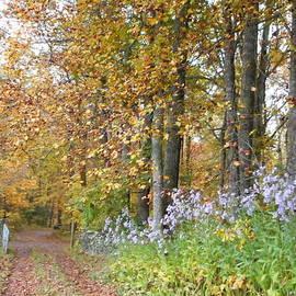 Diannah Lynch - Saying Goodbye To Autumn