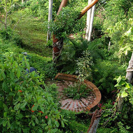 Tolere - Sayulita  Wild Garden
