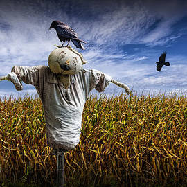 Randall Nyhof - Scarecrow with Black Crows over a Cornfield