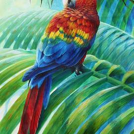 Christopher Cox - Scarlet Macaw on palm