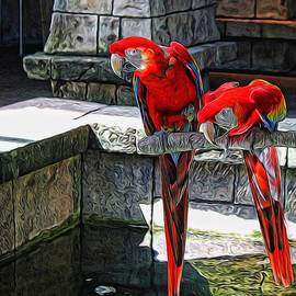 Judy Vincent - Scarlet Macaws Painted