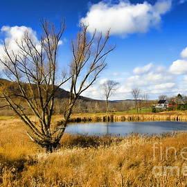 Harold Bonacquist - Schoharie Landscape