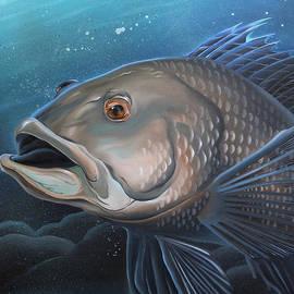 William Love - Sea Bass