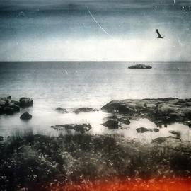 Michele Stuppiello - #sea #mare #landscape #gabbiano