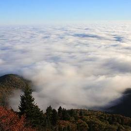 Michael Weeks - Sea of Clouds on the Blue Ridge Parkway