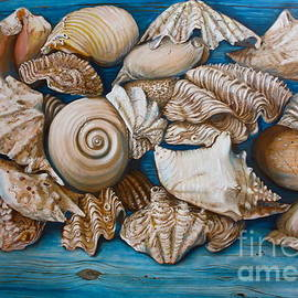 Yvonne Ayoub - Sea Shells on Wood