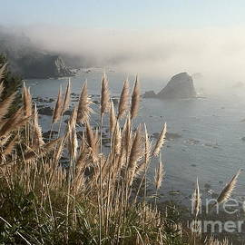 Megan Lovegren - Sea Stack and Fog