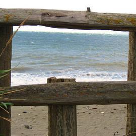 Kym Backland - SEA Thru FENCE