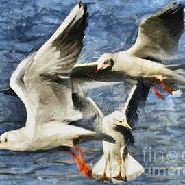 Daliana Pacuraru - Seagulls in flight - drawing