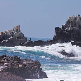 Kristy  Morris - Seal Rock