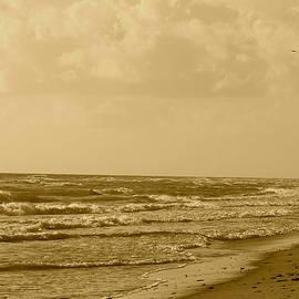 Paula Santos - Seascape I