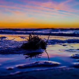 Jason Meredith - Seasgrass Sunset