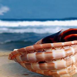 Kaye Menner - Seashell before Blue Ocean
