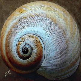 Ben and Raisa Gertsberg - Seashells Spectacular No 36