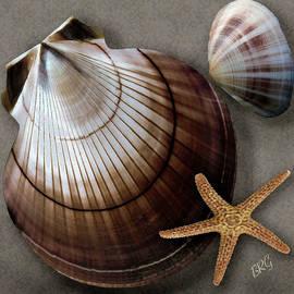 Ben and Raisa Gertsberg - Seashells Spectacular No 38