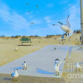 Gary Keesler - Seaside Seagulls