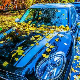 Alexander Senin - Season Of Fallen Leaves