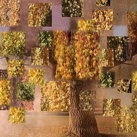 Terry Fleckney - Seasons
