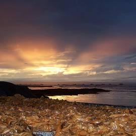 Dan Comeau - Seaweed Sunset