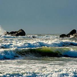 Nancy  de Flon - Second Beach Winter Morning 1