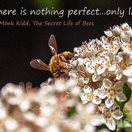 Janice Rae Pariza - Secret Life of Bees