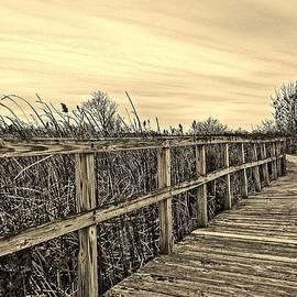 Daniel Thompson - Sepia Boardwalk