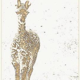 Kathy Barney - Sepia Tones Giraffe