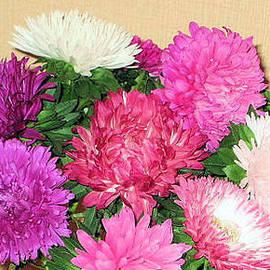 Oksana Semenchenko - Astray Flowers.September-October