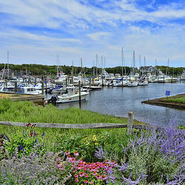 Allen Beatty - Sequatucket Harbor