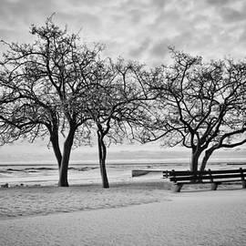 Sven Brogren - Serene wintry lakefront scene