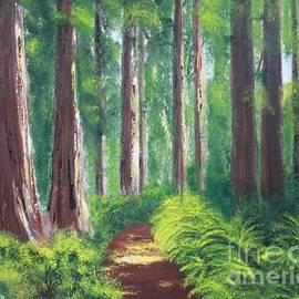 Bev Conover - Serenity Forest