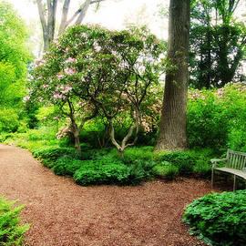 Trina  Ansel - Serenity Garden