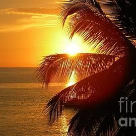 Jackie Burlingame - Serenity Sunset