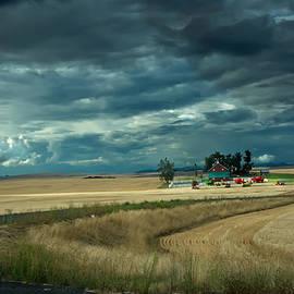 Randall Branham - Serious Working Farm