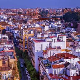 Joan Carroll - Seville Cityscape