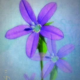 Larry Bishop - Shades of Purple