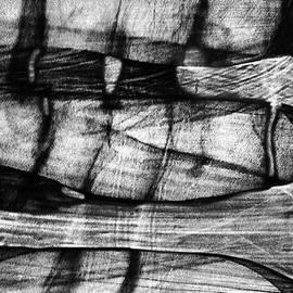 Elena Lir-Rachkovskaya - Shadow of the glass object