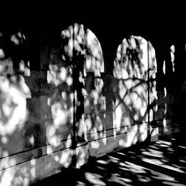 Colleen Kammerer - Shadow Play - Black and White