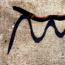 James Aiken - Shadow Play - Snake