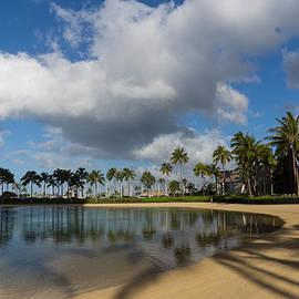 Georgia Mizuleva - Shadows of Palms - a Lagoon in Waikiki Honolulu Hawaii