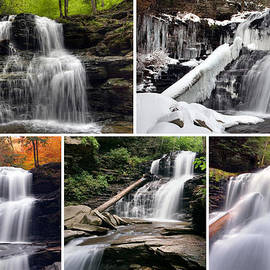 Gene Walls - Shawnee Falls In Every Season